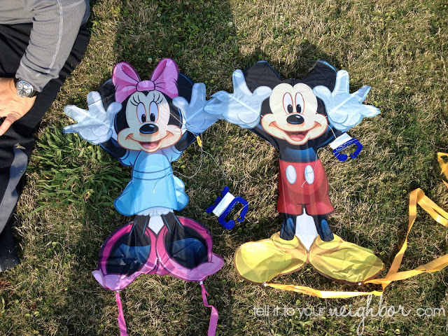 mickey mouse and minnie mouse kite