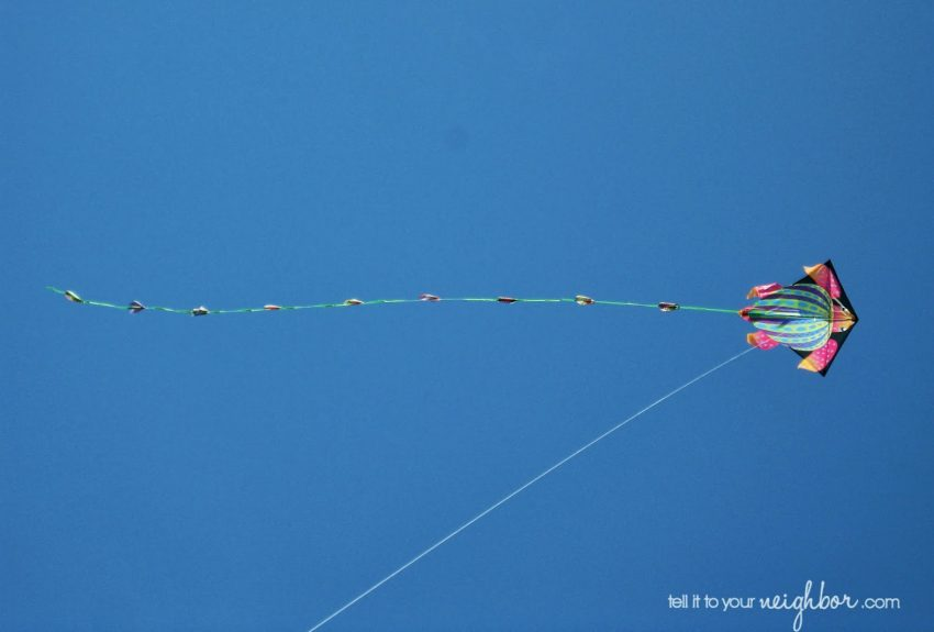 First-Ever Kite Festival